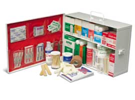EMPTY 2 SHELF FIRST AID CABINET  WITH LINER